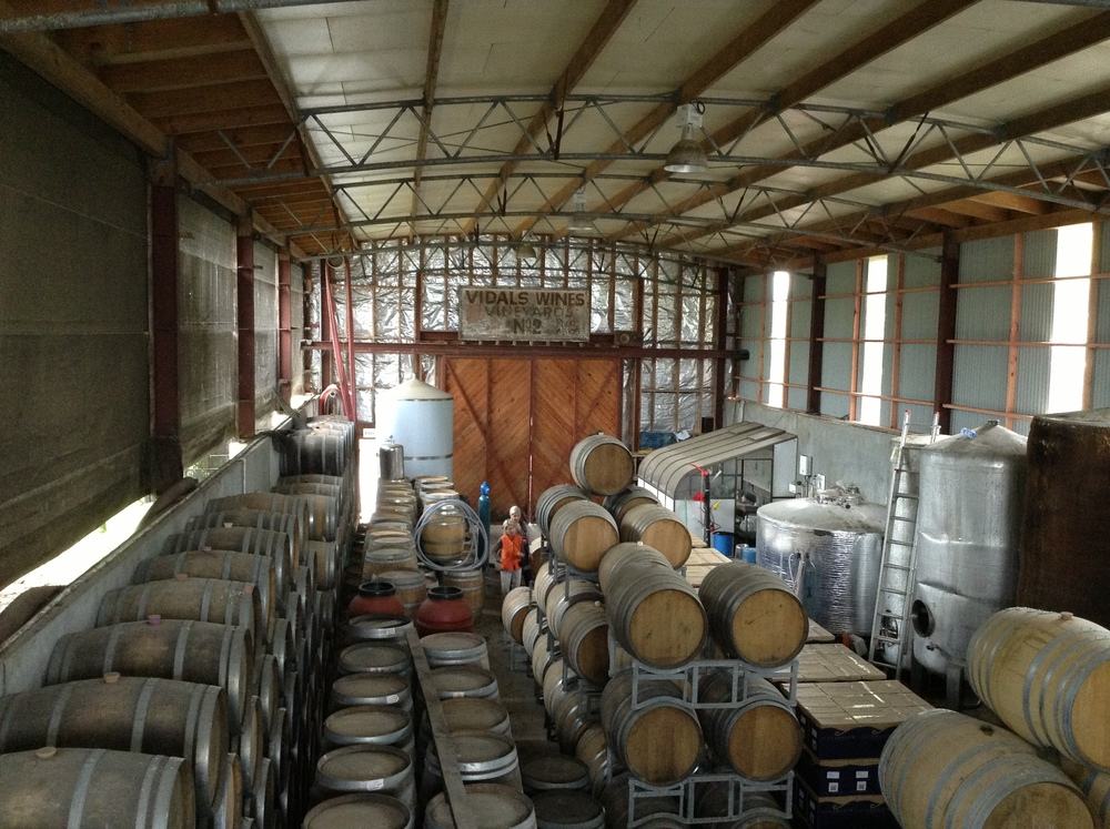 The barrel room is half-submerged in the ground to keep temperatures moderate. Note the Vidal wines vineyard sign, proudly displaying the land's viticultural history.
