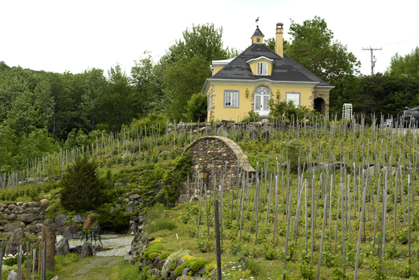 Chapelle Ste. Agnes Vineyard in Eastern Townships, Quebec