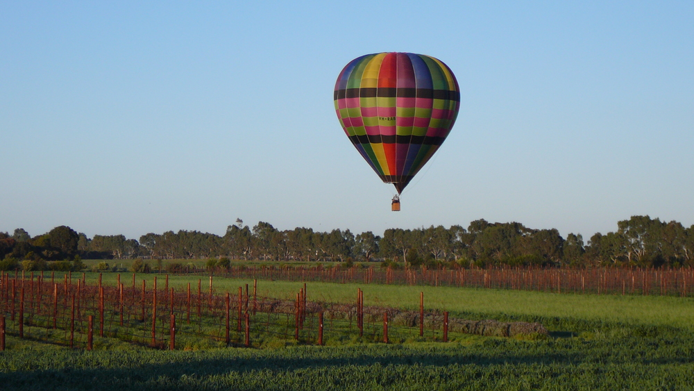 Ballooning above  Koranto Vineyards  in Langhorne Creek