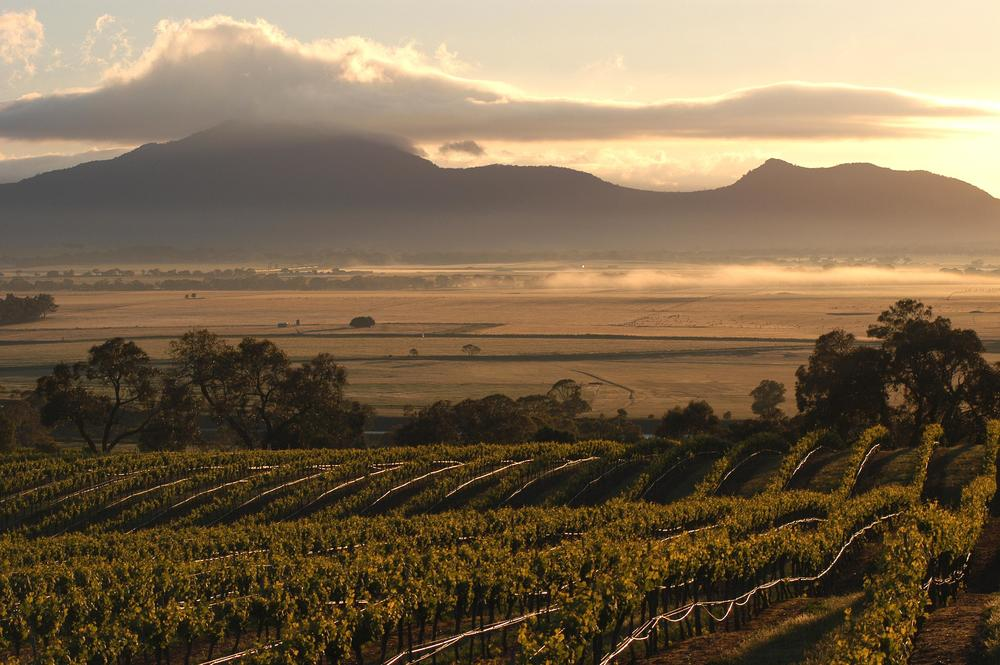 Montara Grampians Estate in the Grampians wine region of the Western Victoria zone.