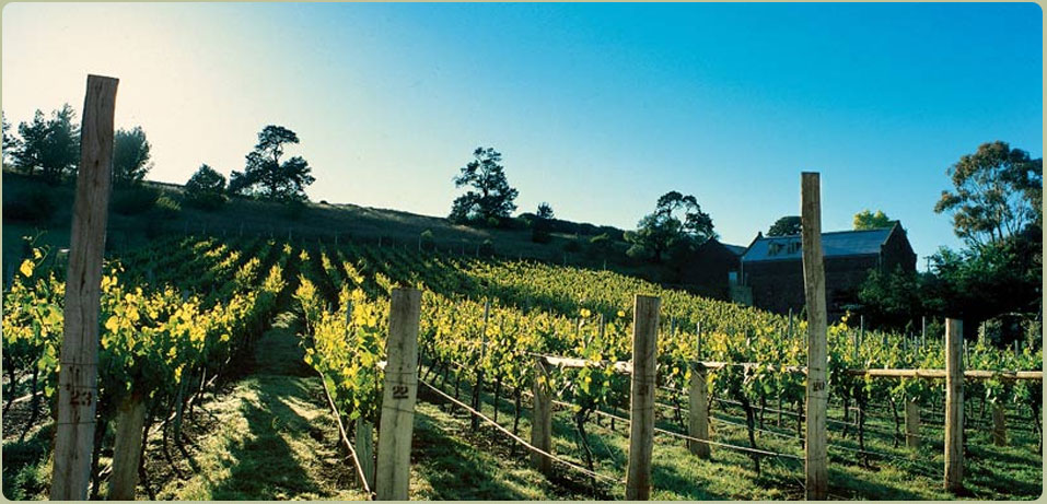Goona Warra Vineyard, Sunbury - Just 10 minutes from Melbourne Airport