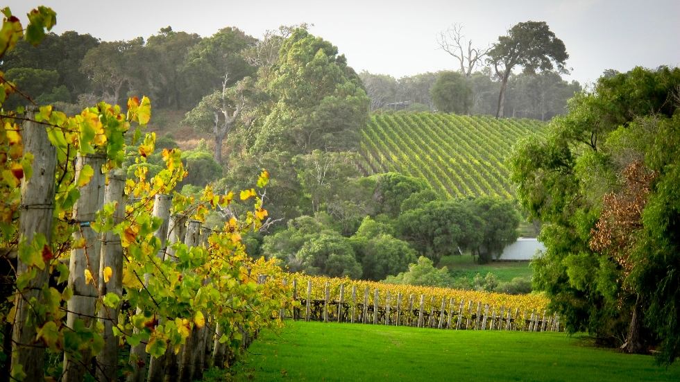 Brookland Valley Estate  - Margaret River Wine Region