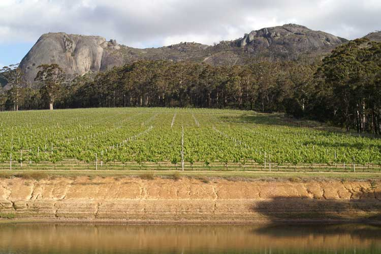 Gibraltar Rock Vineyard  - Porongurup