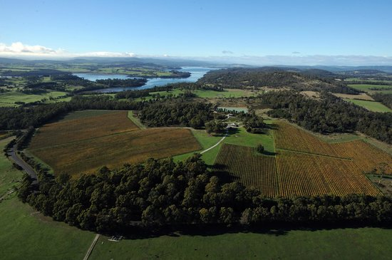 Goaty Hill Wines , Tamar Valley