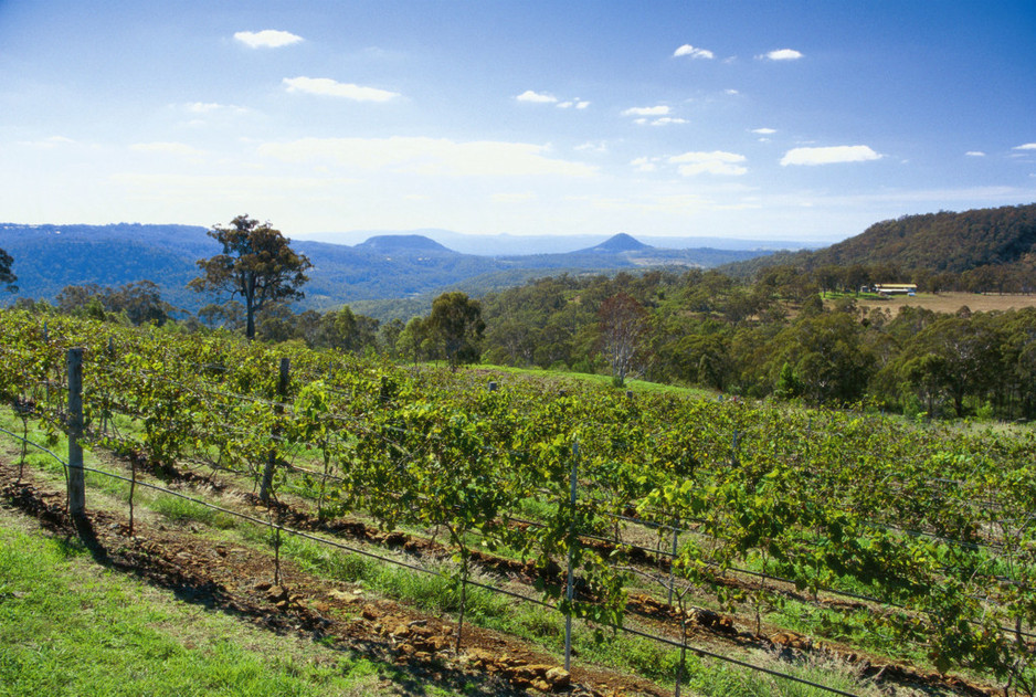 Preston Peak Winery - Darling Downs