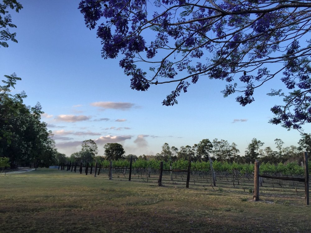 Brierley Wines, North Burnett