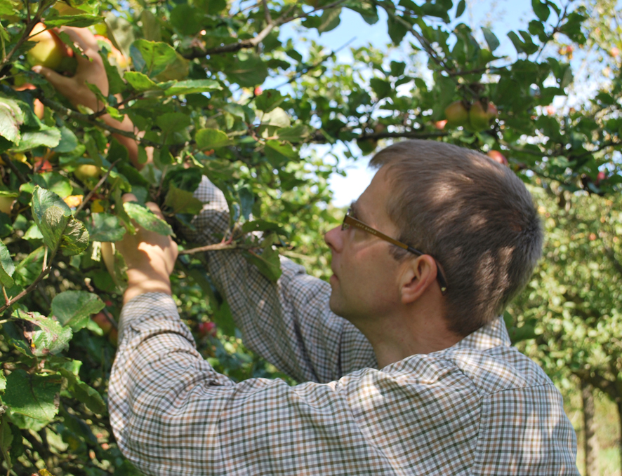 James applepicking.jpeg