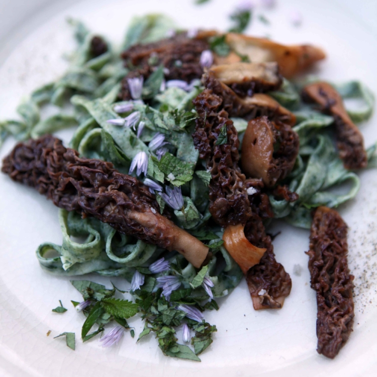 a-new-pastoral-morels-with-spinach-pasta