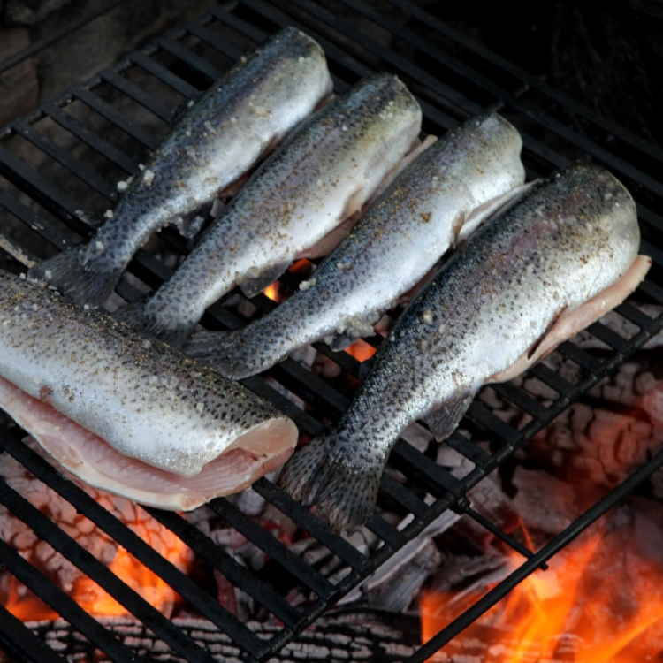 a-new-pastoral-wood-fire-grilled-trout