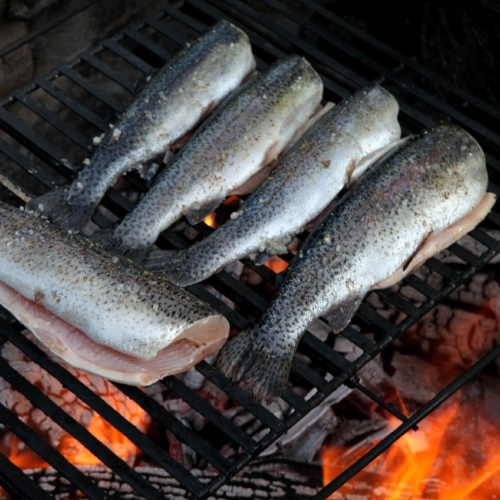 Wood Fire Grilled Trout