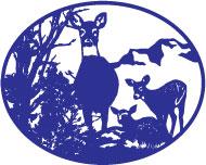Deer-with-twins.jpg