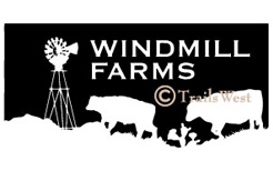 Windmill Farms-A-207