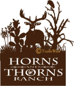 Horns and Thorns Ranch-212