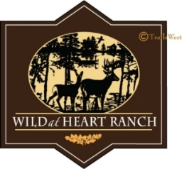Wild at Heart Ranch-216