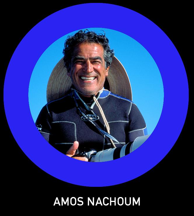 Amos Nachoum TLO.jpg