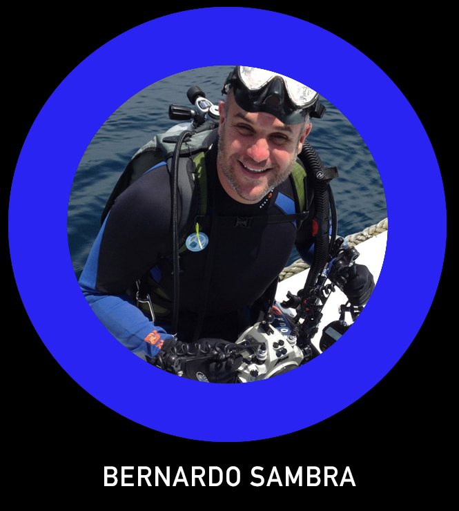 Bernardo Sambra TLO.jpg