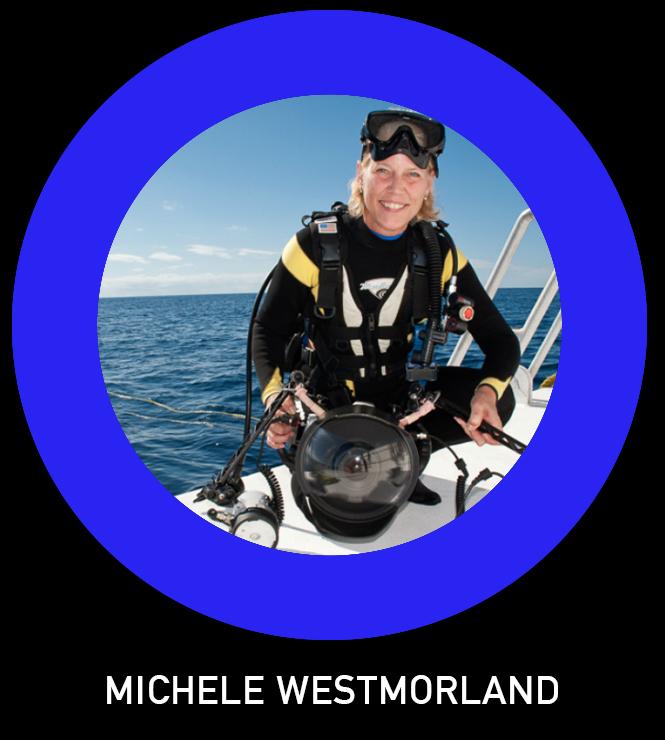Michele Westmorland TLO.jpg