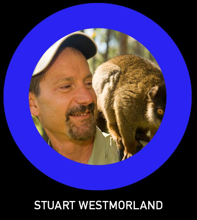 Stuart Westmorland TLO.jpg