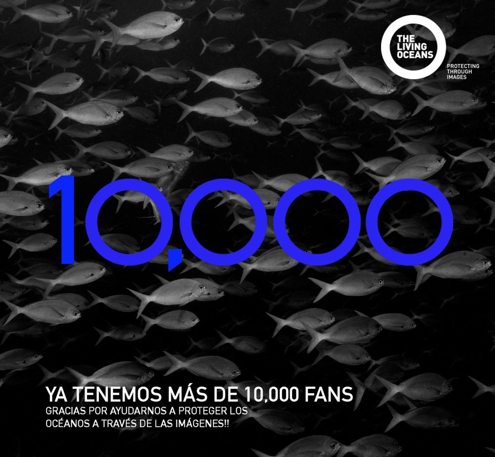 10,000 Fans.jpg