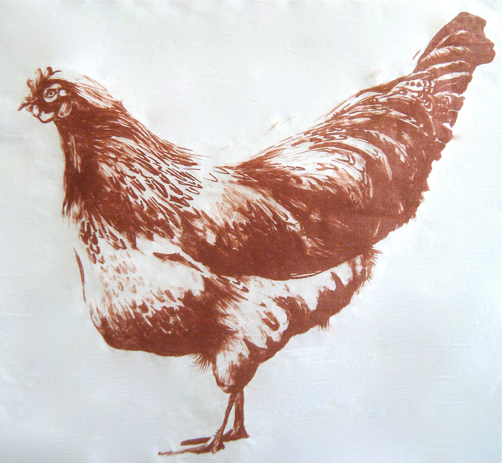 USDA Chicken