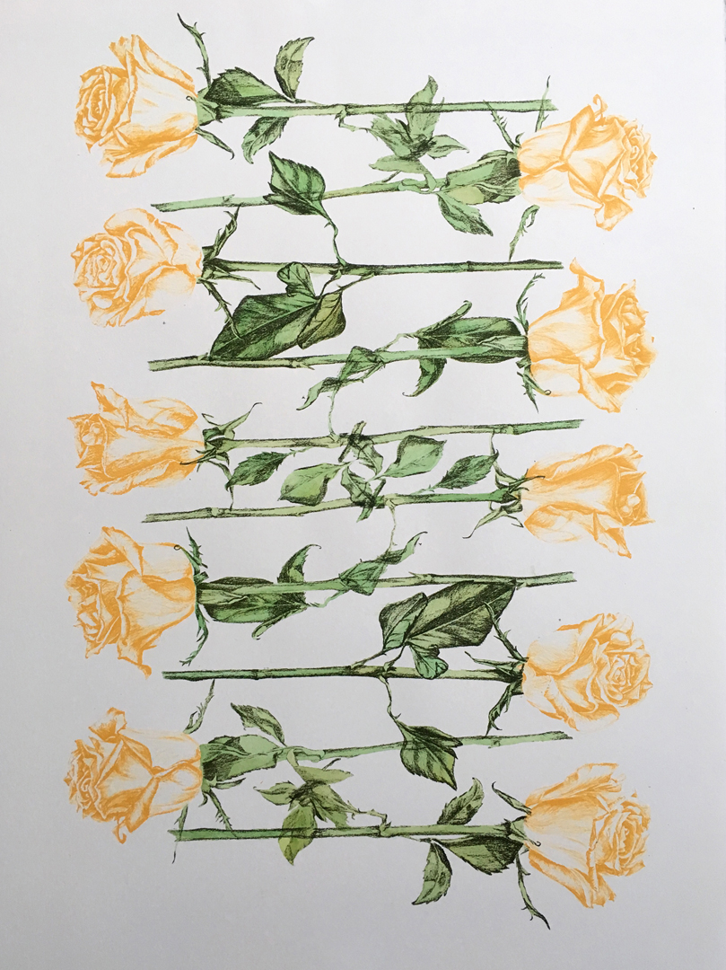 Boxed Roses II
