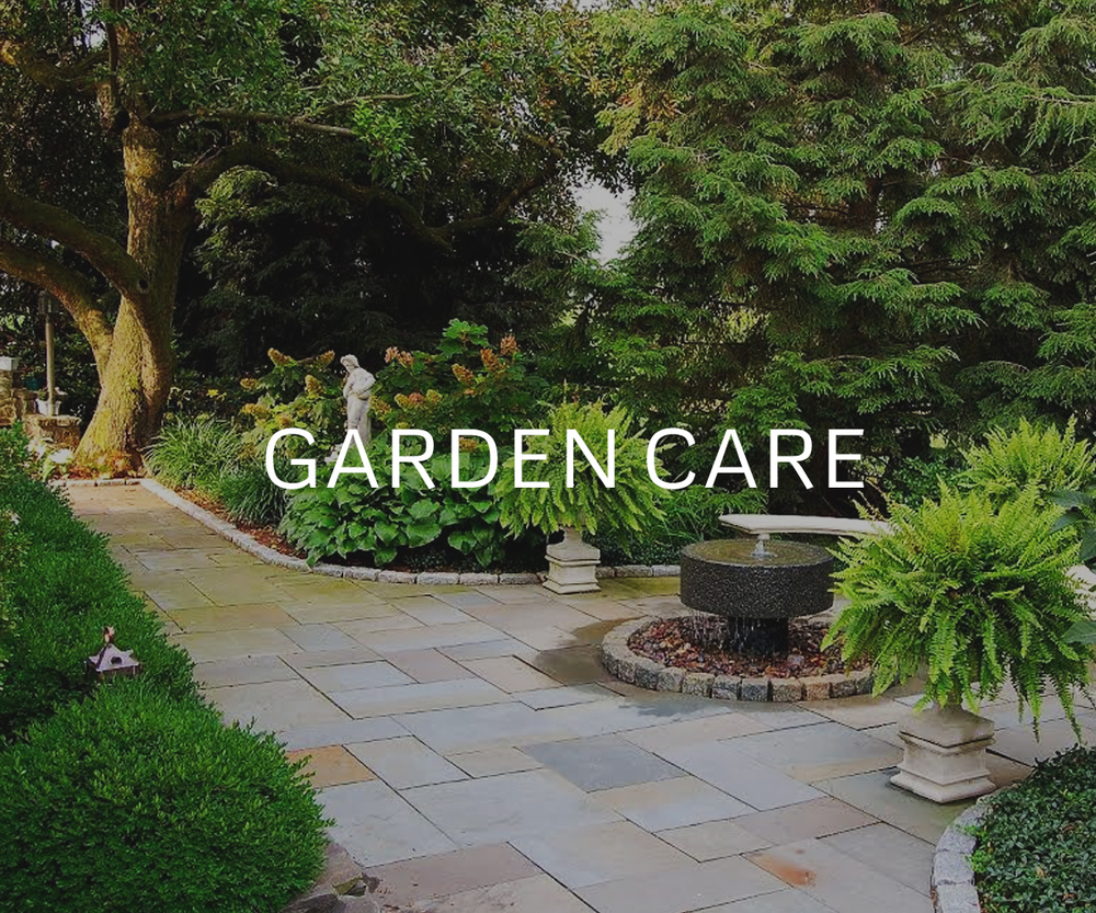 Garden care and maintainence