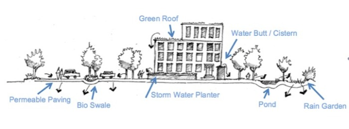 "Drawing of ""Rain Gardens"""