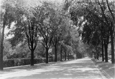 1931-36_6.jpg