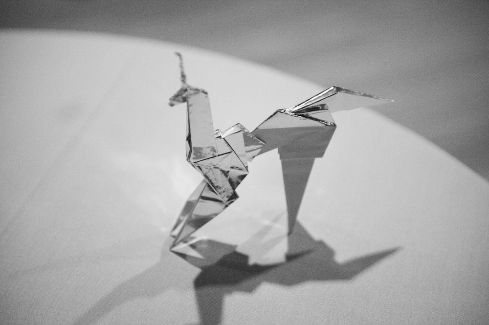 twopaperhorses_photography_-25.jpg