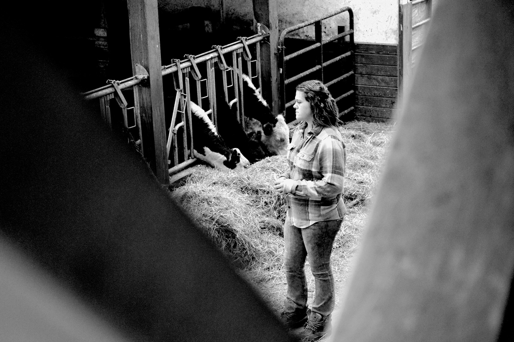 Watching Over Her Cattle