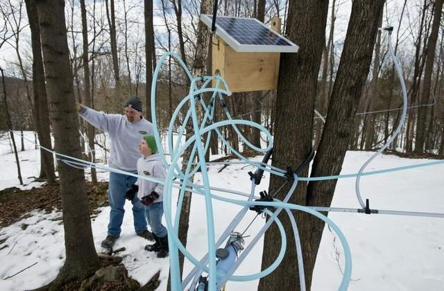Sugar maker Jason Gagne of Highgate (seen with his son Noah, 8) has developed Tap Track, a system which combines GPS maps, radio telemetry and remote sensors, to detect leaks in the vacuum tubing that carries sap from maple trees to holding tanks. / GLENN RUSSELL/FREE PRESS