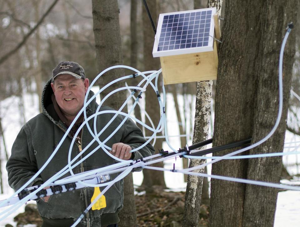 The solar-powered Tap Track system monitors pressure in sap lines like those of Donnie Richards' operation in Vermont. Photo by The Associated Press.