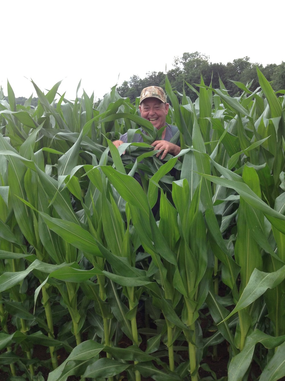 Donnie Richards standing in a healthy field of corn.