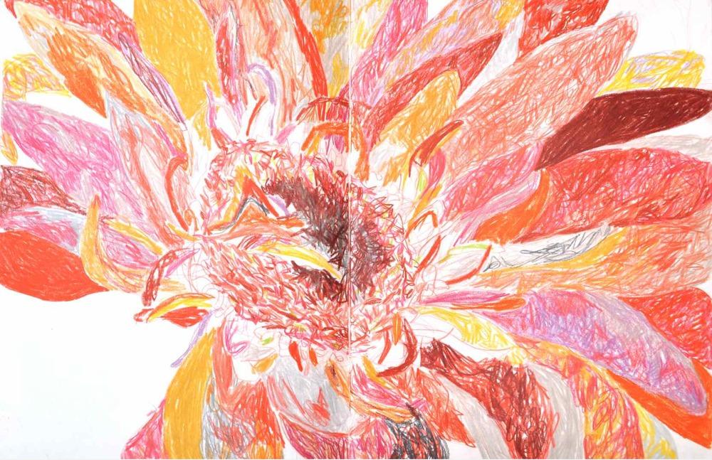 Stamen , 2009 crayons on paper,sketchbook 59,4 x 42 cm