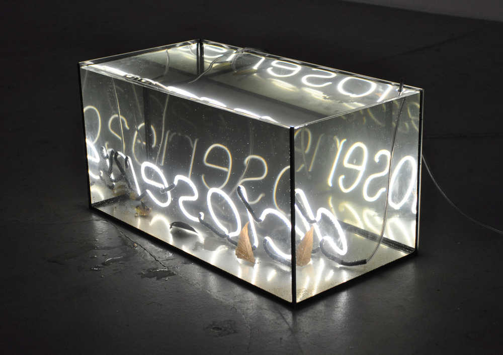 Closer , 2013 underwater neon sculpture, neon, glass, water and leaves from the river Spree 60 x 30 x 30 cm