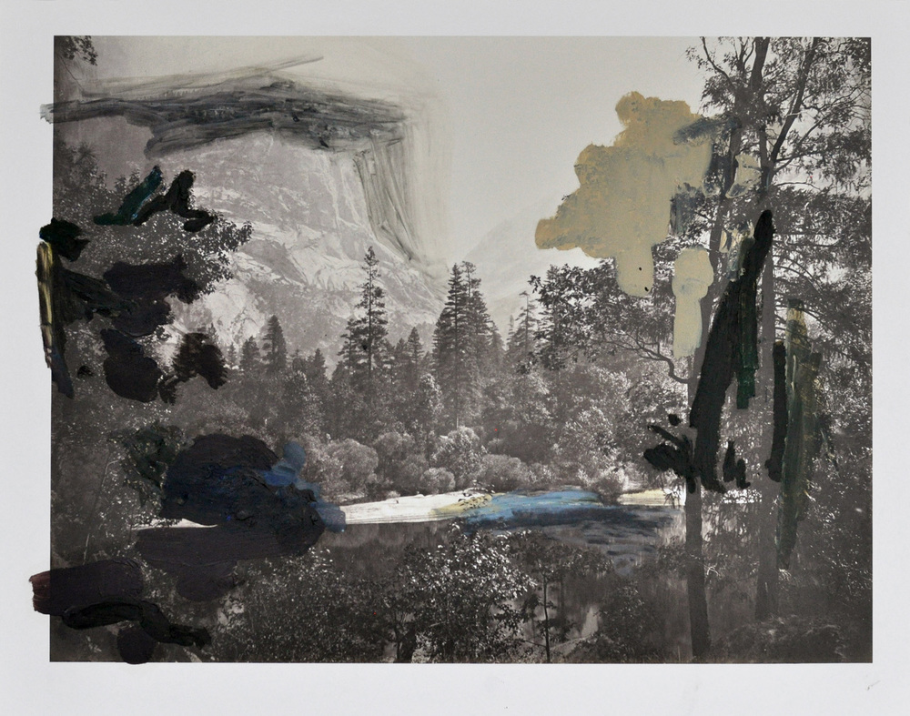 Over Watkins ,  The Lake Bank , 2015 after Carleton Watkins 'The Lake Bank, Yosemite', 1861 oil, gouache, graphite, ink on c-print 28 x 35 cm  (Private collection)