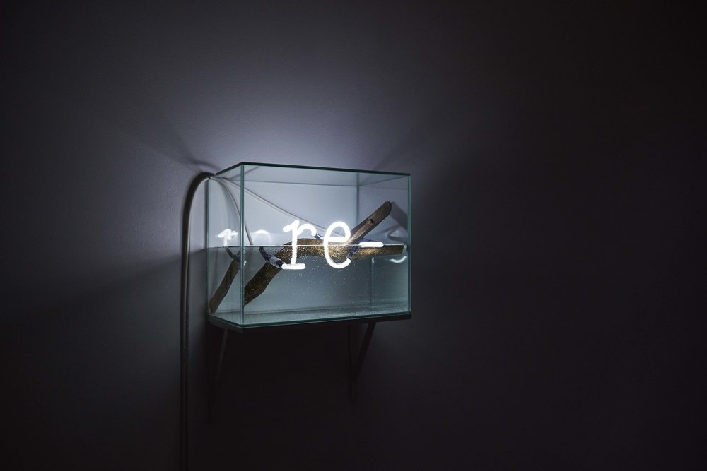 Re-  (2015-16) neon, water, glass, wood 34 x 27 x 20 cm  installation view, Le Huit, Paris, 2015 © Claire Désérable