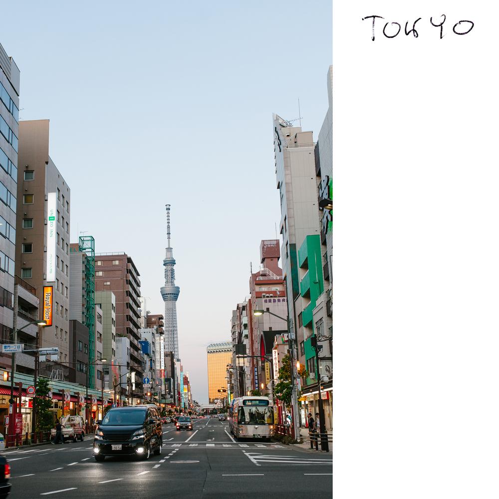 JapanT6.jpg