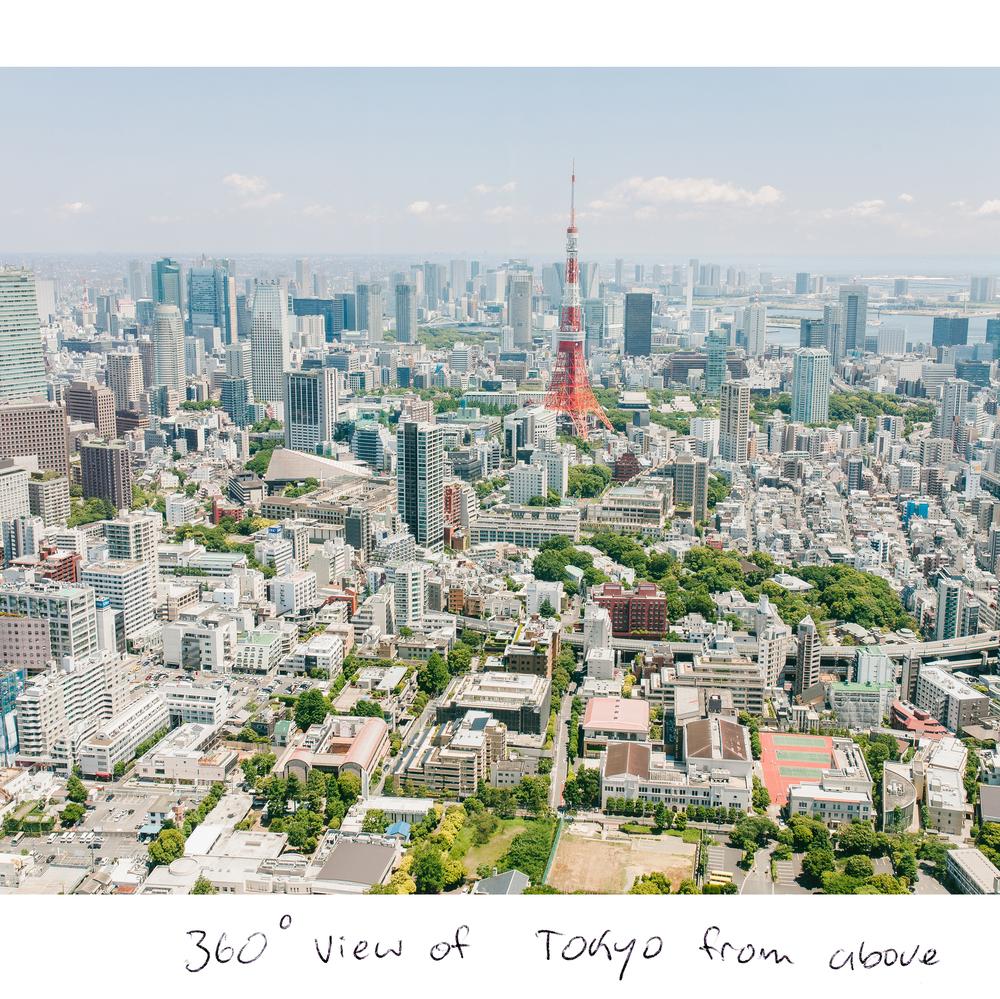 JapanT5.jpg