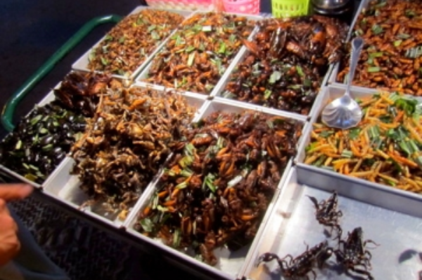 Fried bugs on the street in Bangkok's night market