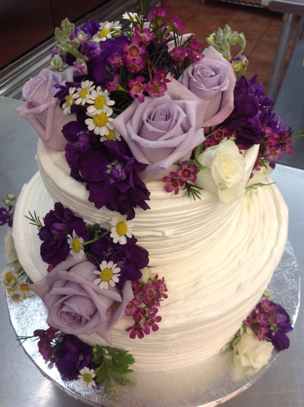 purple spring.jpg