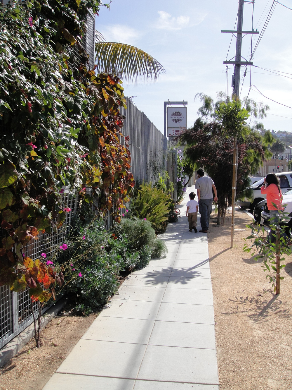 Commercial Nursery Sidewalk Garden