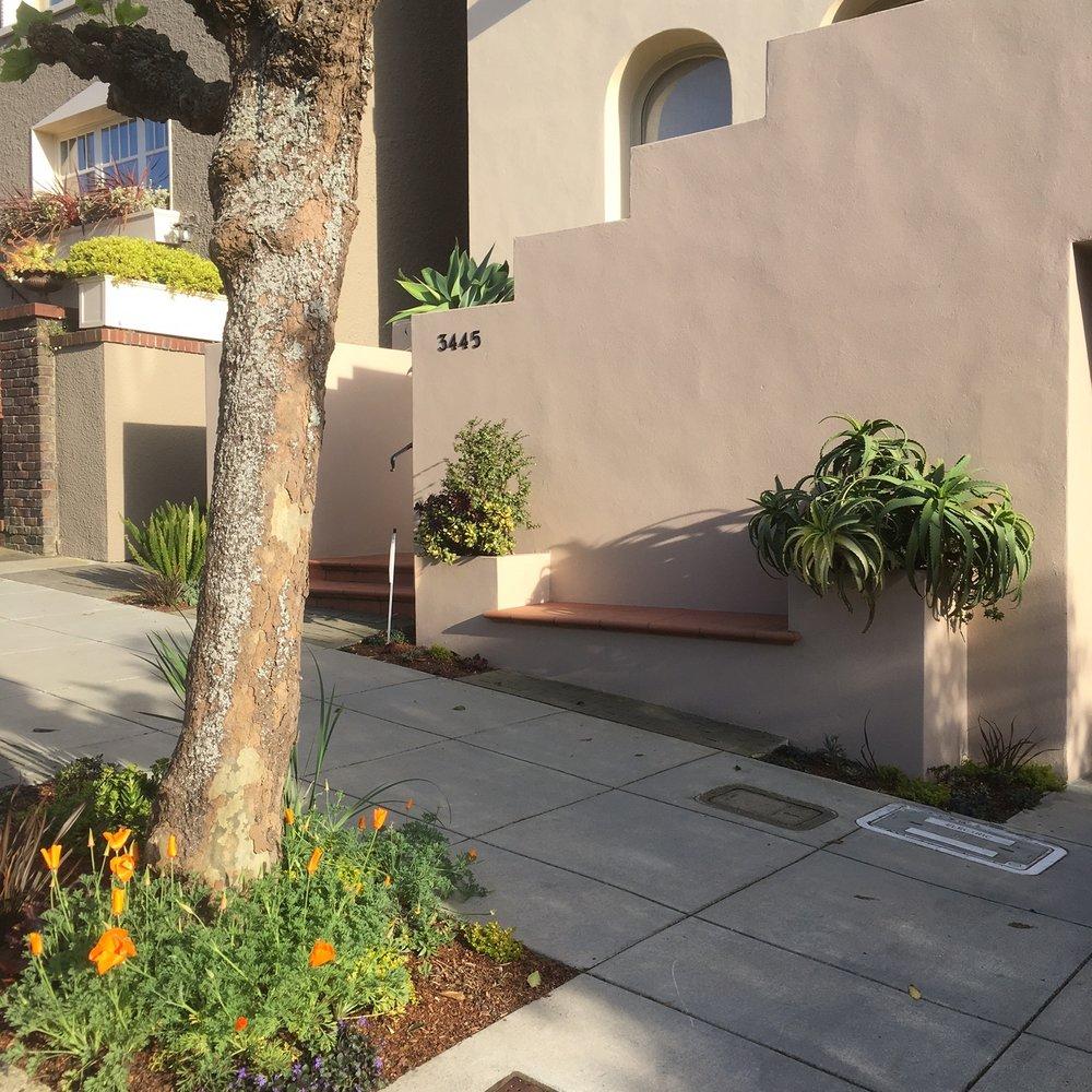 Residential Sidewalk Garden