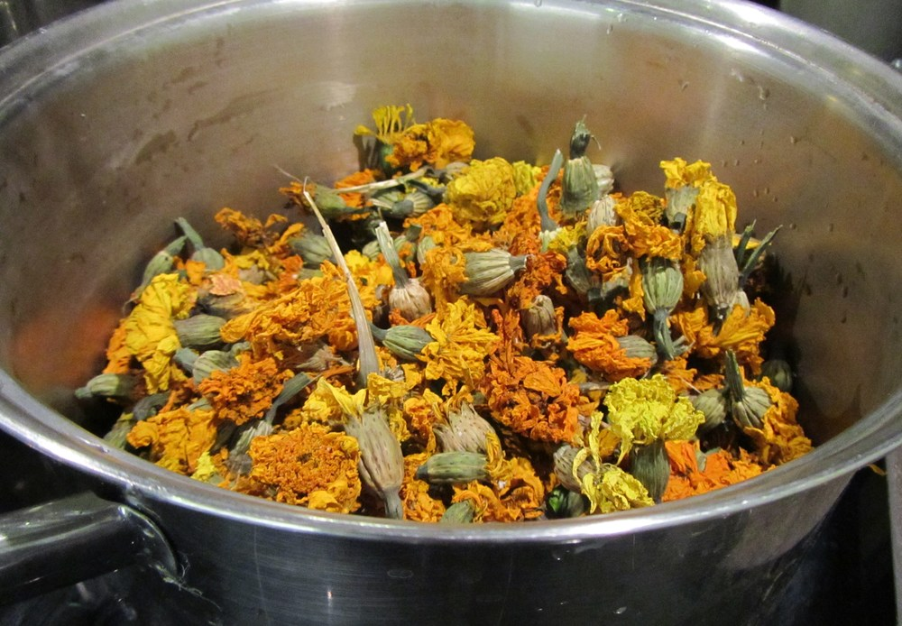 dried marigold flowers