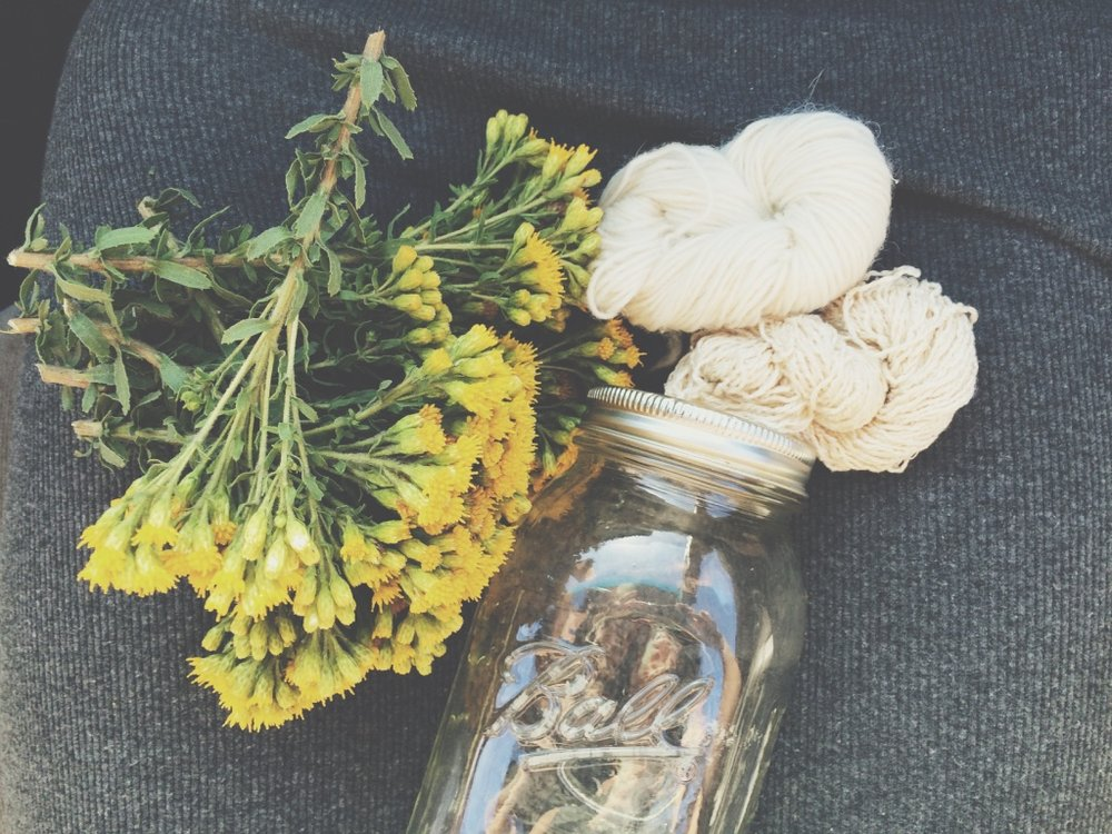 goldenrod foraged for a road trip solar dye