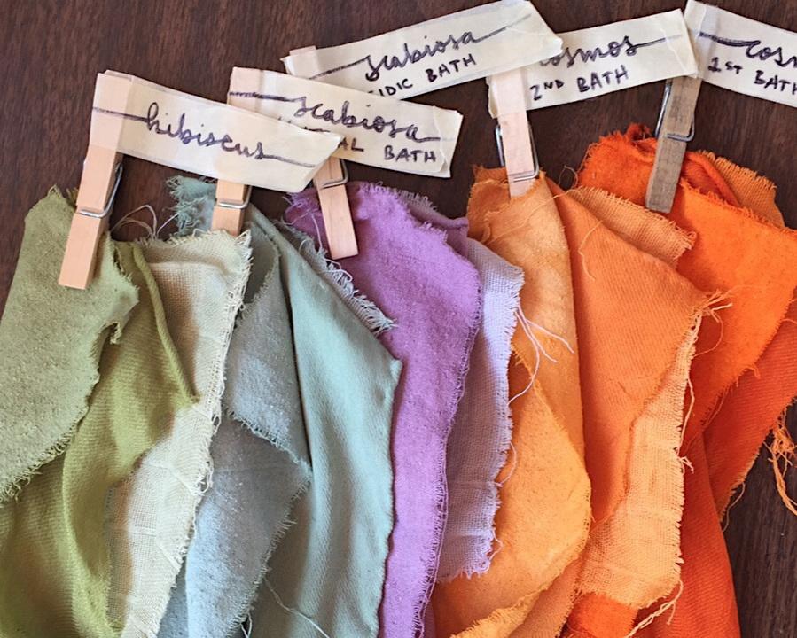 Hibiscus, Purple Pincushion & Sulfur Cosmos dyed fabrics