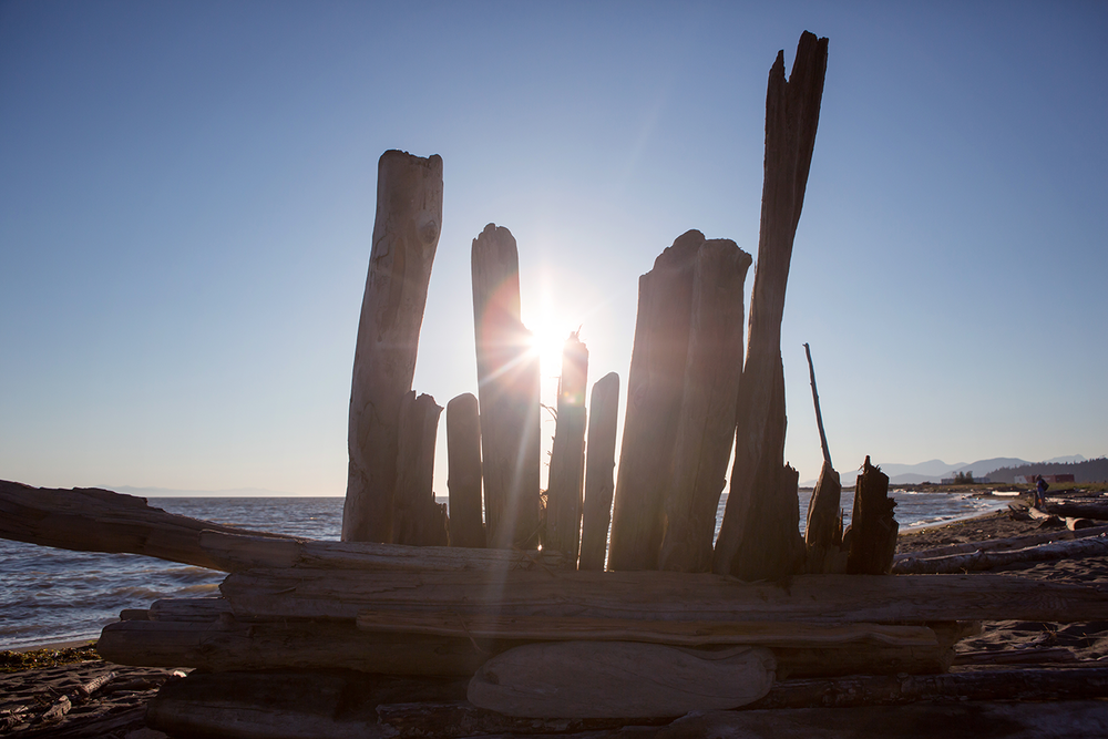 A driftwood sculpture silhouetted on a cloudless day at Iona Beach Regional Park.