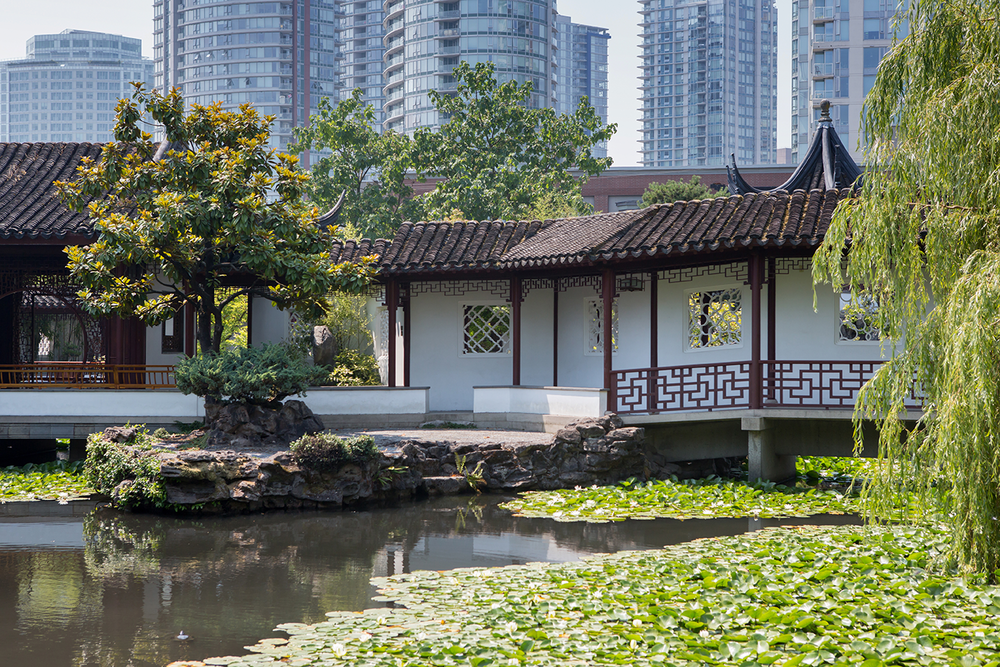 A decorative Chinese hut and koi pond in front of a towering city skyline captured at the Vancouver Chinese Garden.