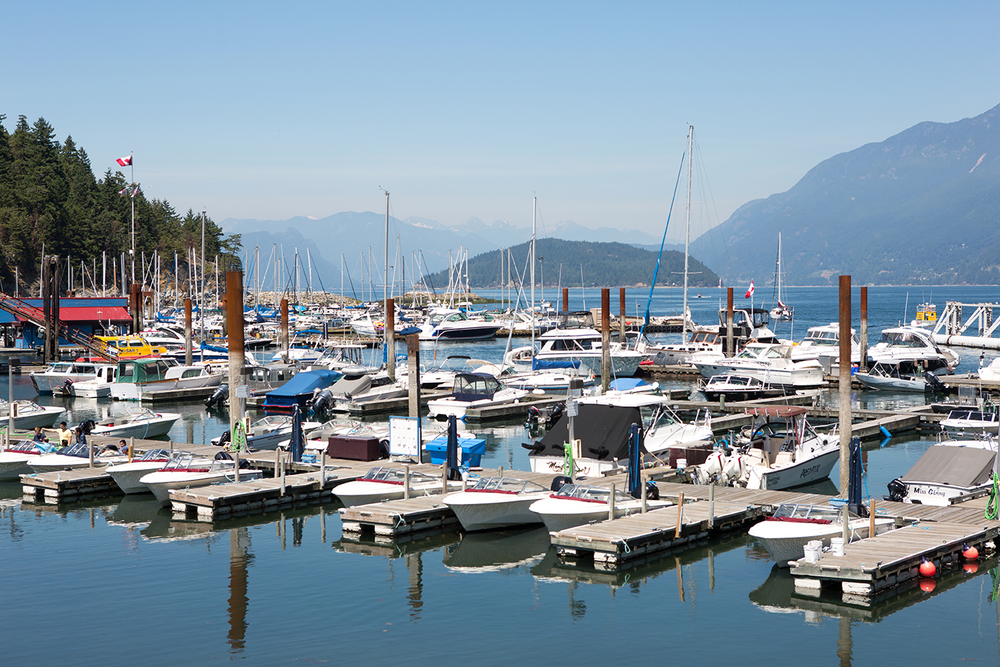A stunning harbor view of several boats against a mountain backdrop at Horseshoe Bay Park.