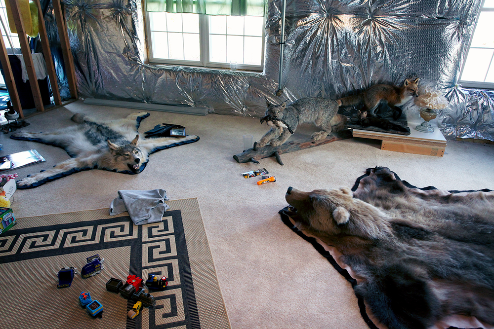 A creepy bear rug and wolf rug stretched out on the floor of a scary, unfinished basement.